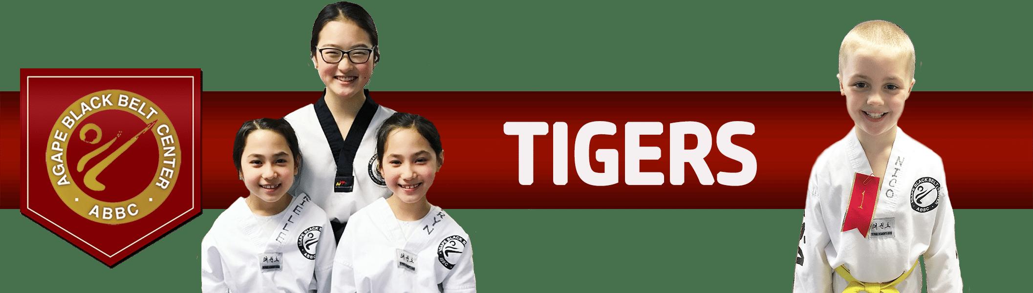 Martial Arts Rochester NY, Taekwondo, Judo, Kumdo, Hapkido.